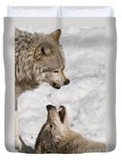 Timber Wolf Pictures 775 Duvet Cover