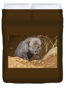 Timber Wolf Pictures 782 Duvet Cover
