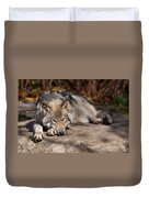 Timber Wolf Pictures 945 Duvet Cover