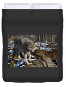 Timber Wolf Pictures 969 Duvet Cover