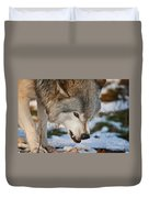 Timber Wolf Pictures 985 Duvet Cover
