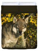 Timber Wolf Teton Valley Idaho Duvet Cover
