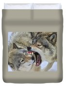 Timber Wolves Play Duvet Cover