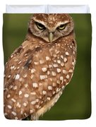 Tiny Burrowing Owl Duvet Cover