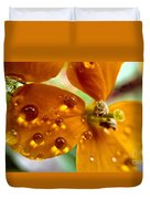 Tiny Dew Drop On Wild Flower Macro Duvet Cover