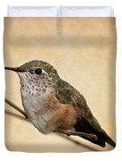 Tiny Hummingbird Resting Duvet Cover