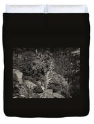 Tioga Pass Road Sepia Duvet Cover