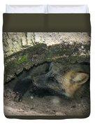 Tired Fox Duvet Cover