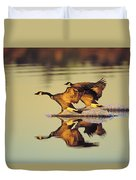 Tk0157, Thomas Kitchin Canada Geese Duvet Cover