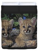 Tk0615, Thomas Kitchin Cougarmountain Duvet Cover