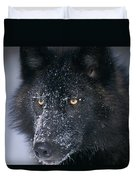 T.kitchin Tk1731e, Gray Wolf, Timber Duvet Cover