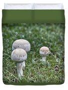 Toadstools V9 Duvet Cover