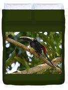 Toco Toucan Amazon Jungle Brazil Duvet Cover