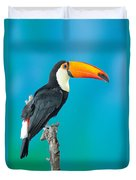 Toco Toucan Perched Duvet Cover