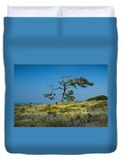 Torrey Pine On The Cliffs At Torrey Pines State Natural Reserve Duvet Cover