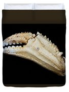 Toucan Crab Claw Duvet Cover