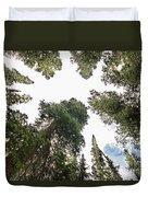 Towering Pine Trees Duvet Cover