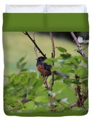 Towhee Keeps Watch On High Duvet Cover by Kym Backland