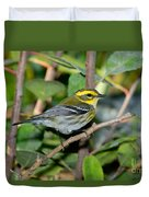 Townsends Warbler In Tree Duvet Cover