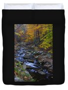 Tracking Color - Big Hunting Creek Catoctin Mountain Park Maryland Autumn Afternoon Duvet Cover