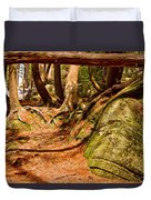 Trail In A Forest, Muskoka, Ontario Duvet Cover