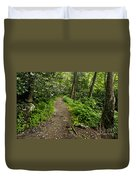 Trail To Chimney Tops - D005669a Duvet Cover