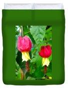 Trailing Abutilon Or Lantern  Flower Duvet Cover