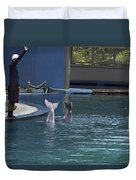 Trainer And The Tails Of A Duo Of Dolphins At The Underwater World Duvet Cover