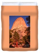 Tree At Devils Tower Duvet Cover