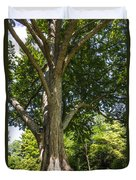 Tree At Msu Duvet Cover