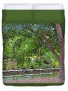 Tree At Norfolk Botanical Garden 4 Duvet Cover