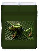Tree Frog 16 Duvet Cover