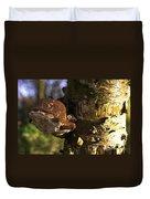 Tree Fungus  Duvet Cover