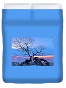 Tree Hanging Over Lake - Photographers Collection Duvet Cover