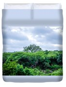 Marula Tree In African Sky Duvet Cover