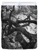 Tree In Prescott Park - Bw Duvet Cover