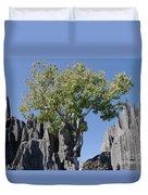 Tree In The Tsingy De Bemaraha Madagascar Duvet Cover