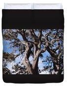 Tree Of Hope Duvet Cover