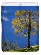 Tree Of Seasons Duvet Cover