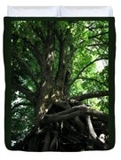 Tree On Pierce Stocking Scenic Drive Duvet Cover by Michelle Calkins