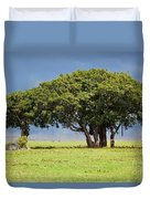 Tree On Savannah. Ngorongoro In Tanzania Duvet Cover