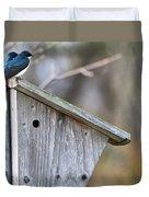 Tree Swallows On Birdhouse Duvet Cover
