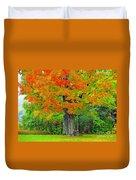 Tree Swing Duvet Cover