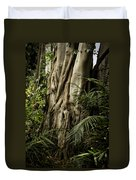 Tree Trunk And Ferns Duvet Cover