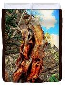 Tree Trunk Duvet Cover by Kathleen Struckle