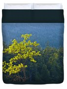 Tree With Yellow Leaves In Acadia National Park Duvet Cover
