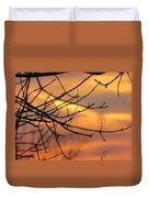 Trees Ablaze In Autumn Duvet Cover