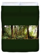 Trees At Olympic National Forest Duvet Cover