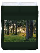 Trees At Sunrise Duvet Cover