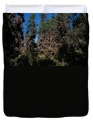 Trees Covered With Monarch Butterflies Duvet Cover